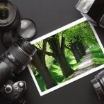 photo-walks