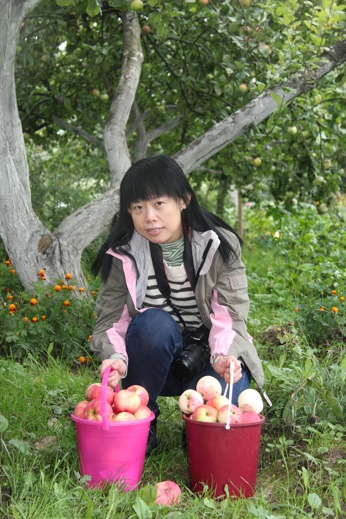 Apple season, Traveler from Hong Kong